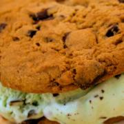 p-mint-chocolate-chip-ice-cream-sandwich02